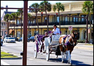 05d - Bridge of Lions - Horse Drawn Carriage
