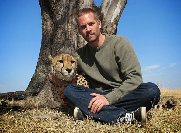 paul-walker-natureza