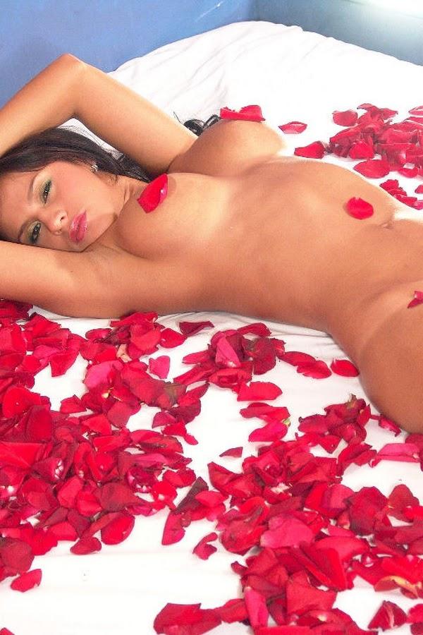 Andrea Rincon, Selena Spice Galeria 48 : Solo Para Ti, Corazon Petalos De Rosa En La Cama – Andrearincon.com
