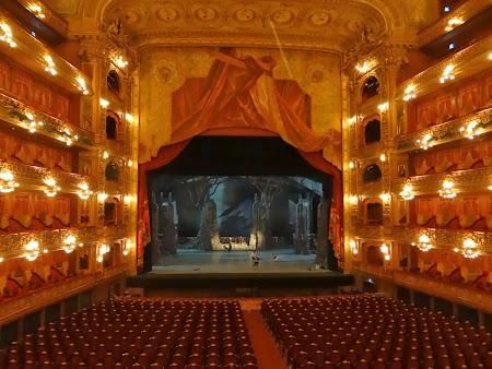15. Sala Mare - teatrul Colon.JPG