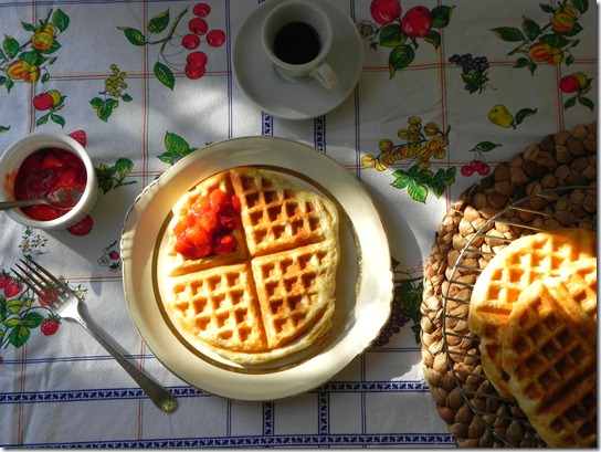 vegan-overnight-yeast-waffles-2