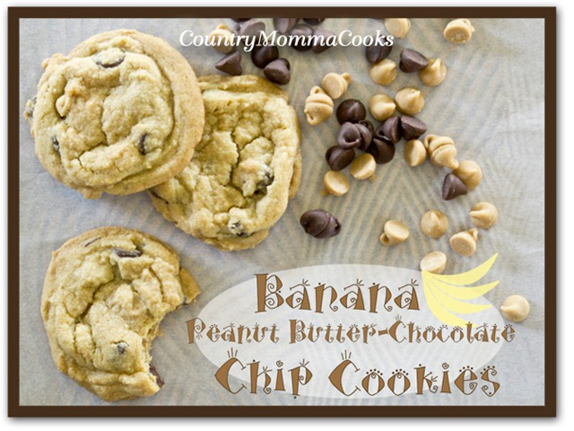banana-chip-cookies