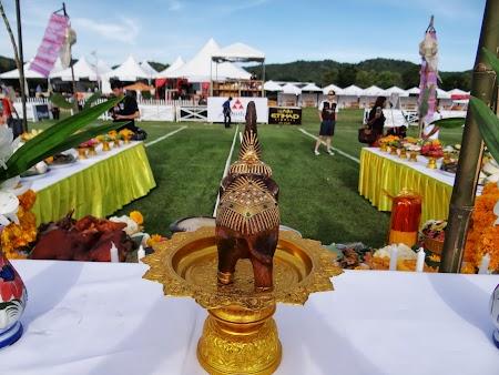 03. Ceremonie sfintire elefanti.JPG