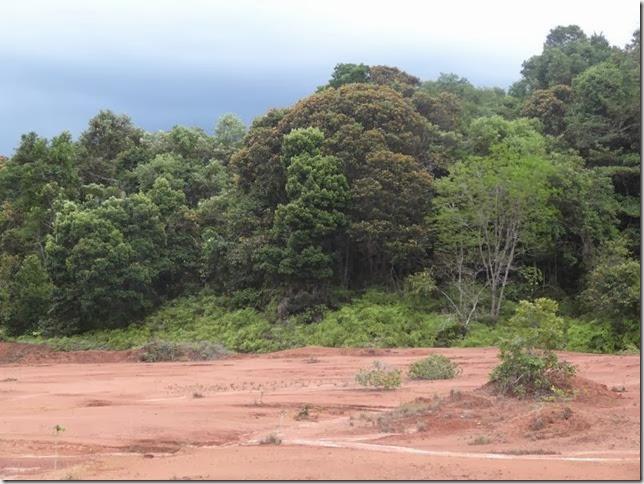 BR-319_Humaita_Manaus_Day_3_DSC05689