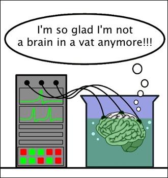 descartes brain during a good vat essay