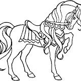 caballo-11.jpg
