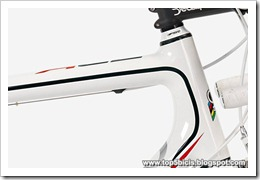 Colnago ACE 2013 (7)