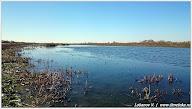 Озеро. Фото Лобанова В.