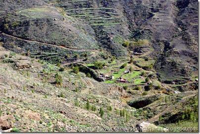 7040 Cruz Tejeda-Artenara-Guardaya(Guardaya de abajo)