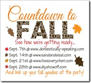 countdown to fall copy