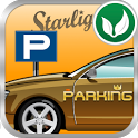 Parking King icon