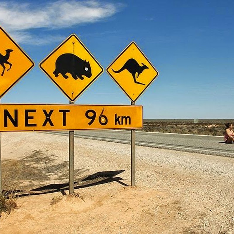 The Long and Lonely Eyre Highway: Australia's Longest Straight Road