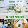 Nature Study: The Plant Kingdom