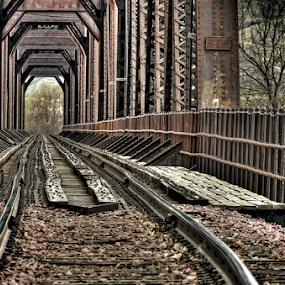 It's Going To Be a Bumpy Ride by Bob Grandpre - Transportation Railway Tracks ( missouri, zoom, rail road, grandpre photography, bridge, compression, rr bridge,  )