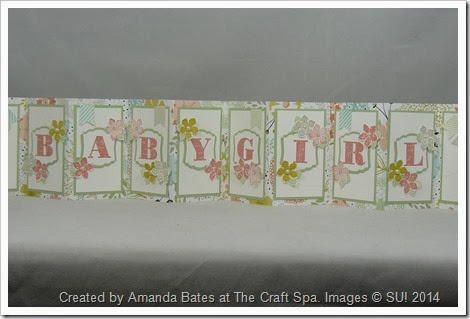 Tag Topper Concertina Card_Baby Girl_2014_03_09_Amanda Bates_The Craft Spa (4)