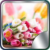 Fresh Flowers Live Wallpaper
