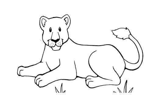 Dibujo De Pantera Pantera Colorear Dibujos Top Como: Panteras Dibujos
