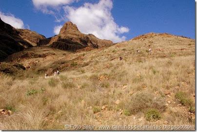 7327 Tunte-Fataga-Arteara(Cañada de las Aneas)
