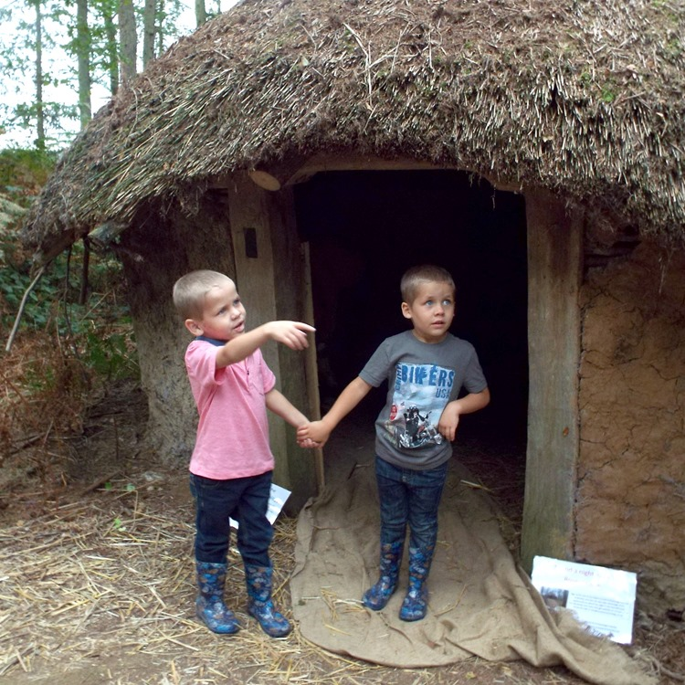 Wood Fair Ahren and Ethan thatched house