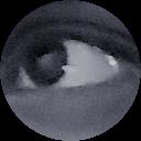 Image Google de Arkeus