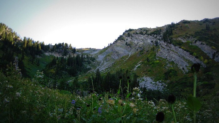 Upper Alexander Basin Meadow Sunset Twilight Millcreek Canyon