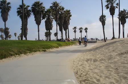 Plaja Venice Beach de langa Los Angeles: Au si iarba, au si nisip