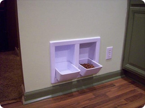 animal feeding station in wall