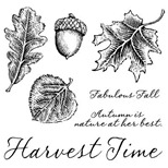 C1504_fall harvest stamps