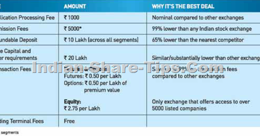Best stock option tips provider in india