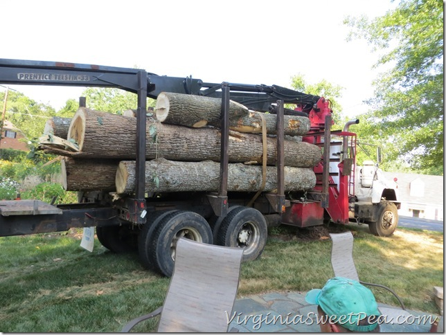 Truck with Logs