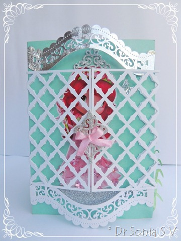 Pop up cards 1