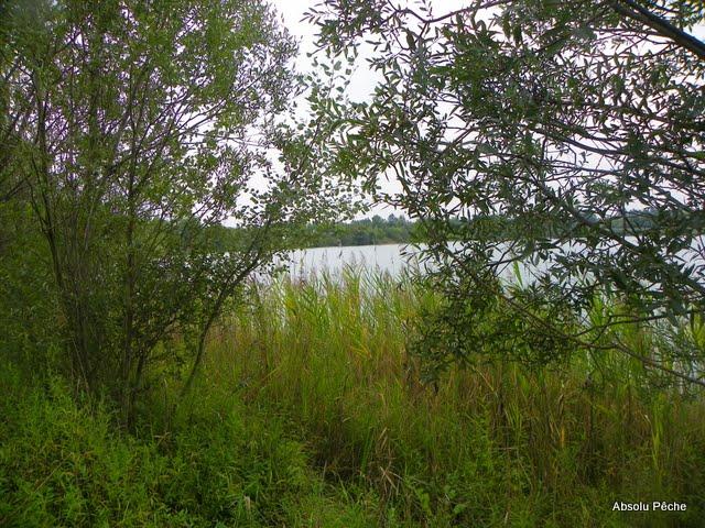 Lac du Grand Colombier photo #530
