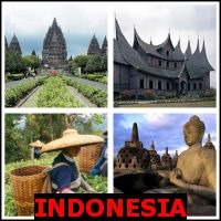 INDONESIA- Whats The Word Answers