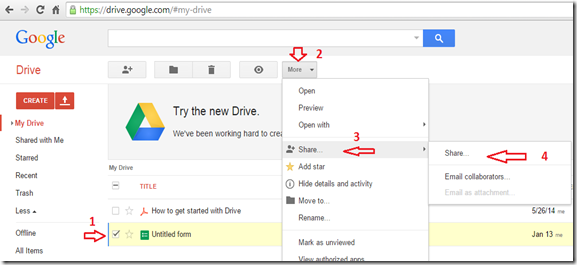 Google Drive file share