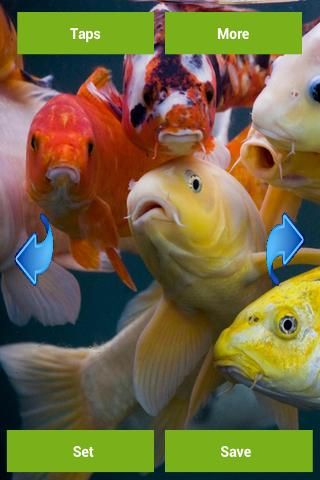 Koi fish wallpapers android apps on google play for Koi fish store