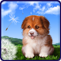 Puppy live wallpaper Pro logo