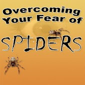 OVERCOMING YOUR FEAR OF SPIDER