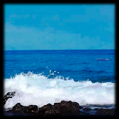 Ocean Waves Live Wallpaper 31