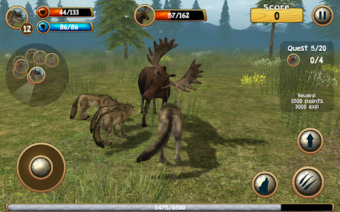 Wild Wolf Simulator 3D v1.1 (Mod Points)