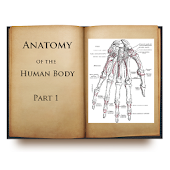 Anatomy of the Human Body I