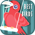 Best Bird Sounds