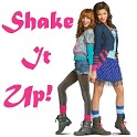 Shake it Up! icon