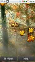 Screenshot of Fall Golden Diamond Leaves