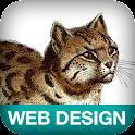 Designing Web Navigation logo