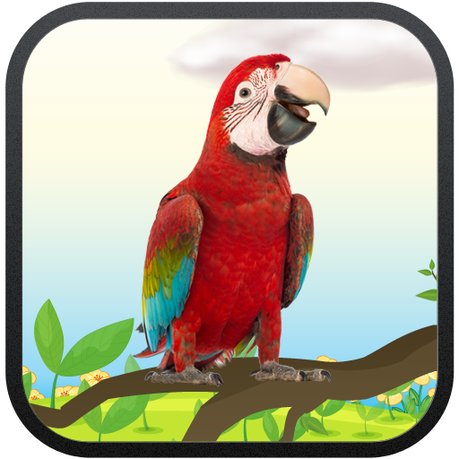 Real Talking Parrot Icon