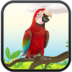 Real Talking Parrot 3.1 Apk