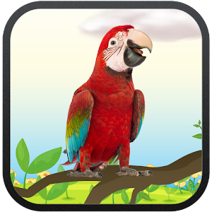 Real Talking Parrot for Android