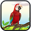 Real Talking Parrot 2.0 APK for Android