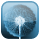 Dandelion Live Wallpaper v1.5.4