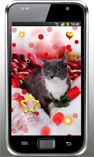 Kitty n Puppy live wallpaper